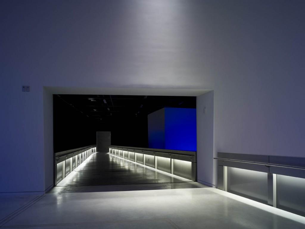 Musée des Confluences-08