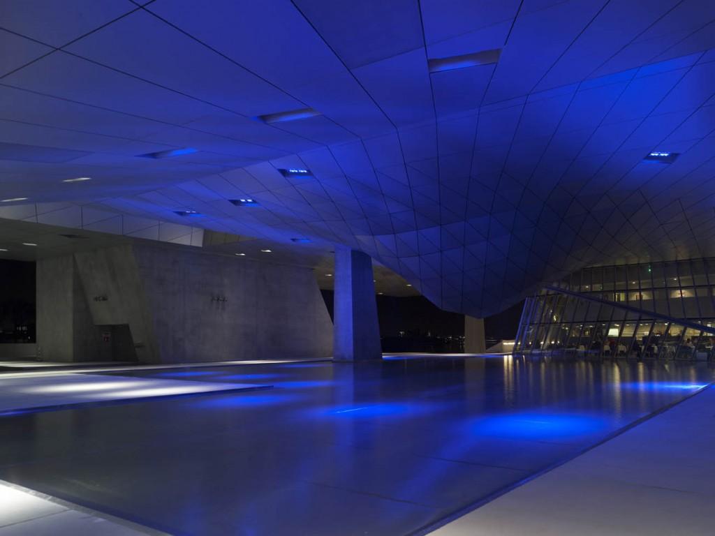Musée des Confluences-40